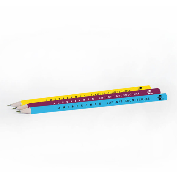 """Bleistifte """"Grundschulkampagne"""" (20 Stück)"""